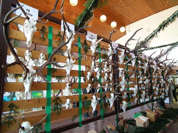 Vystavené trofeje sa na Orave triedia podľa revírov.