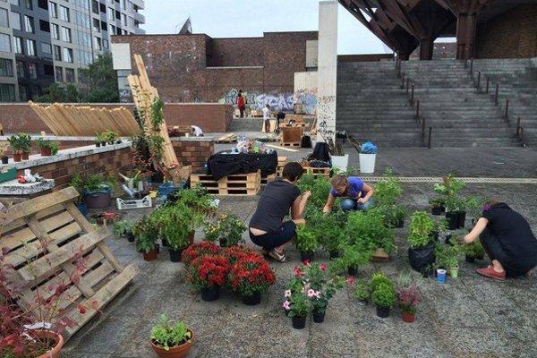 Prípravy na otvorenie komunitnej záhrady na terase Slovenského rozhlasu.