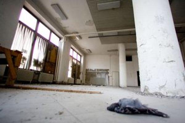 Budova Astorky je dnes prázdna, na zemi ležia mŕtve holuby.