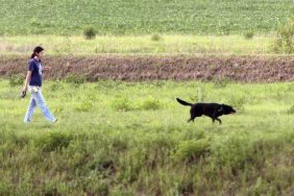 Bez vôdzky sa budú môcť psy pohybovať len na jednom z brehov Lutilského potoka.