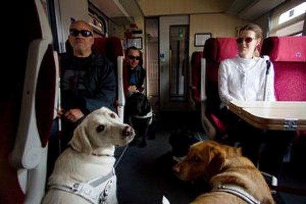 Cestovanie verejnou dopravou je pre nevidiacich občanov často jediným možným spôsobom prepravy v rámci mesta, preto je ohľaduplnosť ostatných cestujúcich voči nim dôležitá.