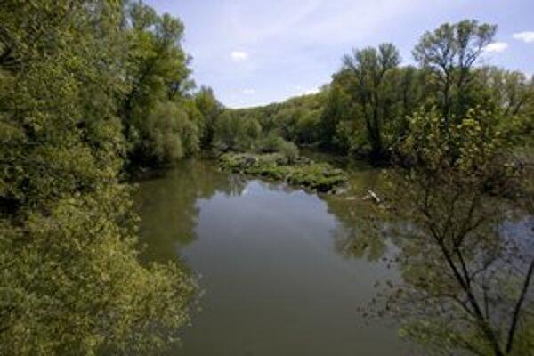 Ostrov Sihoť je riečny ostrov na Dunaji.