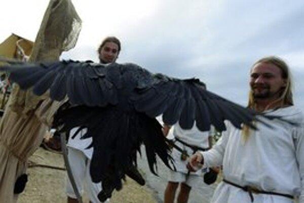 Na Devíne možno obdivovať dravé vtáky celkom zblízka.