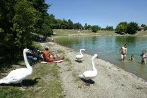Kuchajda funguje v lete ako prírodné kúpalisko, v areáli nebudú vyberať vstupné.