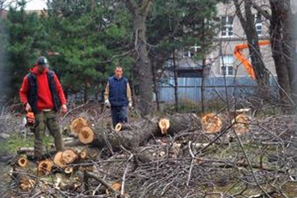 Stromy v parku na Belopotockého začali rúbať v piatok poobede, posledný padol v sobotu ráno. Občania podali trestné oznámenie.