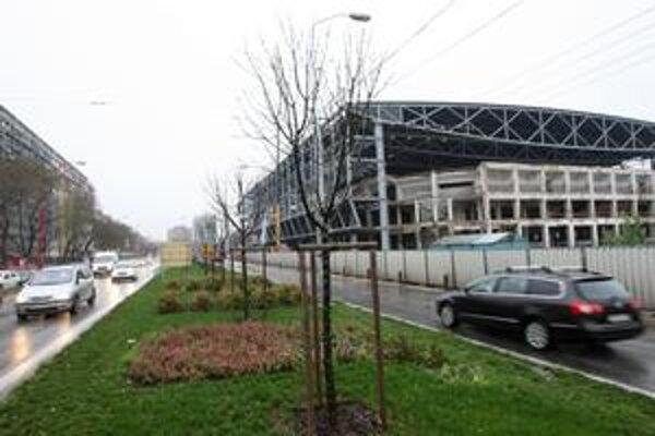 Stredový pás na Trnavskej mesto pred dvoma rokmi plánovalo výrazne zazeleniť. Vysadilo tam javory aj magnólie. Z pásu má teraz ukrojiť odbočenie, ktoré súvisí s prerábkou zimného štadióna. Mesto tvrdí, že to, čo nedávno sadilo, nezmizne.