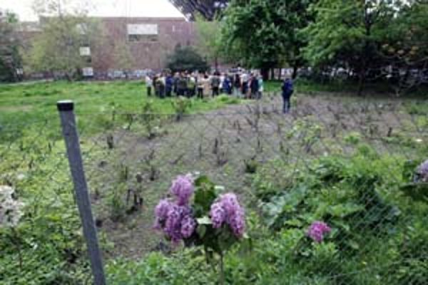 Na včerajšom neverejnom pojednávaní o parčíku Belopotockého sa chceli zúčastniť aj občania, ktorí bojujú za jeho zachovanie. Novinári čakali mimo oploteného pozemku.