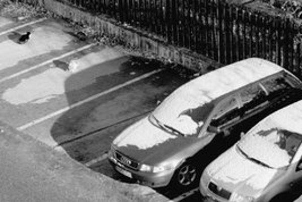 Cez víkend napadol v meste prvý sneh. Sneženie sa očakáva aj dnes, na čísle 0850 211 525 môžu obyvatelia hlásiť akékoľvek problémy a nedostatky, ktoré sa týkajú správy ciest.