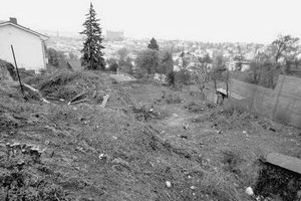 Pozemok vedľa Dodokovej vily je doslova vyholený. Čo tu rástlo a aká je škoda, môžu ochranári už len odhadovať podľa pňov.