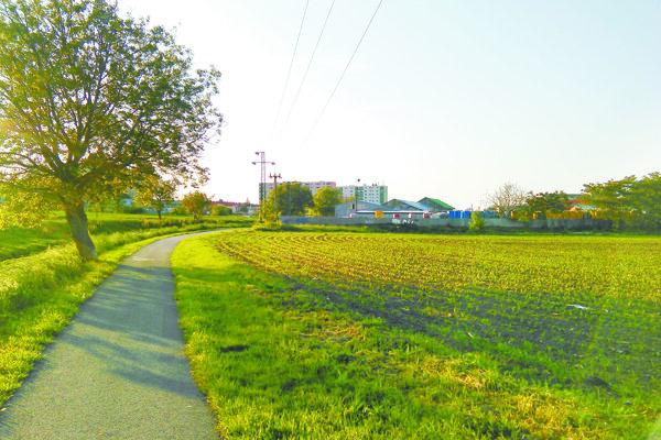 Súčasný chodník, ktorý spája Trnavu s mestskou časťou Modranka.