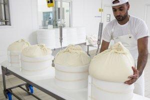 Výroba pravého parmezánu - Parmigiano Reggiano.
