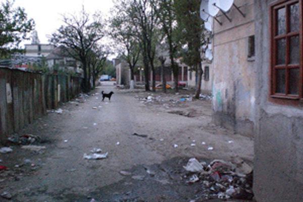 Odpad, potkany, a túlavý pes blízko centra Bukurešti.