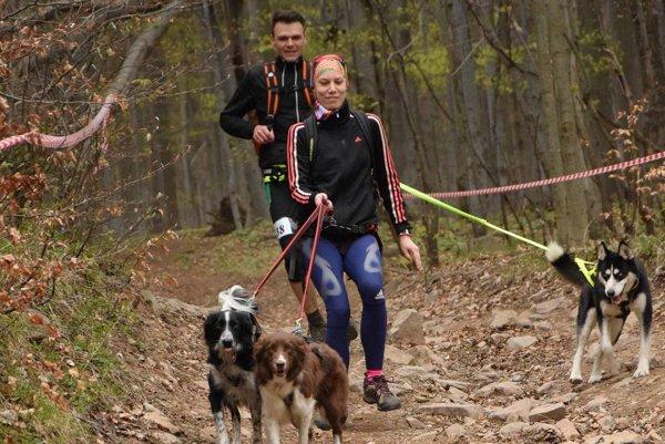 Dogtrekking je vytrvalostný šport človeka a psa, ktorí musia byť po celý čas spojení.