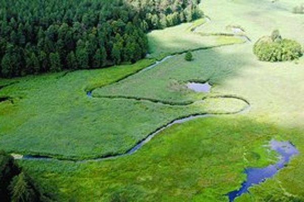 Ekologickí aktivisti sa pokúšajú blokovať výstavbu diaľnice cez neporušené údolie Rospuda. Obyvatelia neďalekého Augustova však so stavbou súhlasia. Cez ich mesto totiž prechádzajú tisícky kamiónov, ktoré mieria do Litvy.
