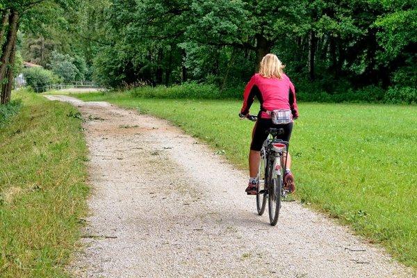 Asi 200 kilometrov lesných ciest v správe Lesov Slovenskej republiky dostane asfaltový povrch.