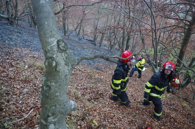 Požiarovisko musia ešte monitorovať. Vodu vynášali pešo do strmého svahu.