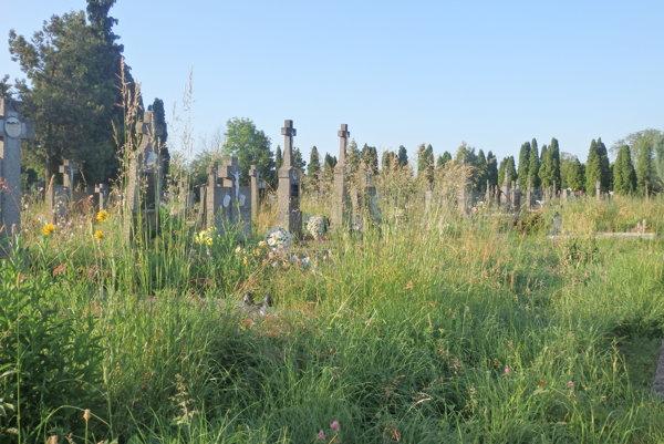 V takomto stave našli ľudia cintorín ešte pred pár dňami.