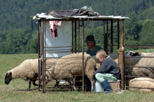 Nová mena má ľuďom na Slovensku pomáhať aj v ťažkých časoch.