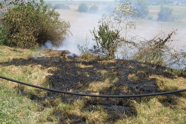 Vypaľovanie trávy v čase sucha môže mať takéto následky.