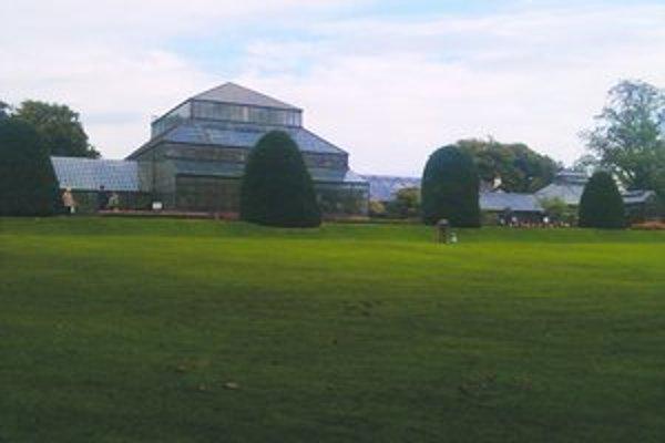 V Glasgowe, kde študuje Levičanka, je rozľahlá botanická záhrada.