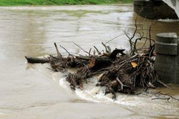 Vyčistenia koryta môže zabrániť povodniam.