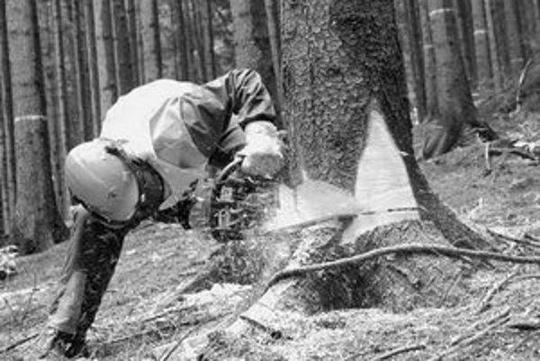 Sezónnych pracovníkov si najímajú zamestnávatelia najmä v odvetviach lesníctva, poľnohospodárstva a stavebníctva.