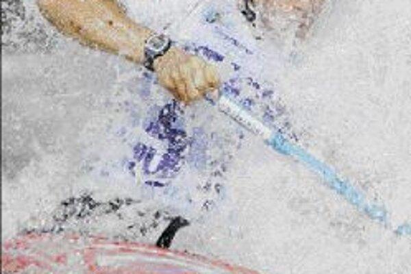 Na posledných majstrovstvách sveta vo francúzskom L'Argentiére la Bessée získal Michal Martikán striebornú medailu. V júni budú vodní slalomári o európske tituly bojovať v Liptovskom Mikuláši.