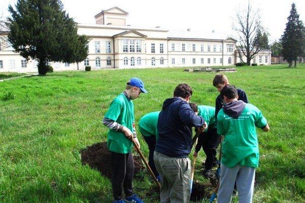 Mladí Palárikovčania priložili ruku  k dielu.