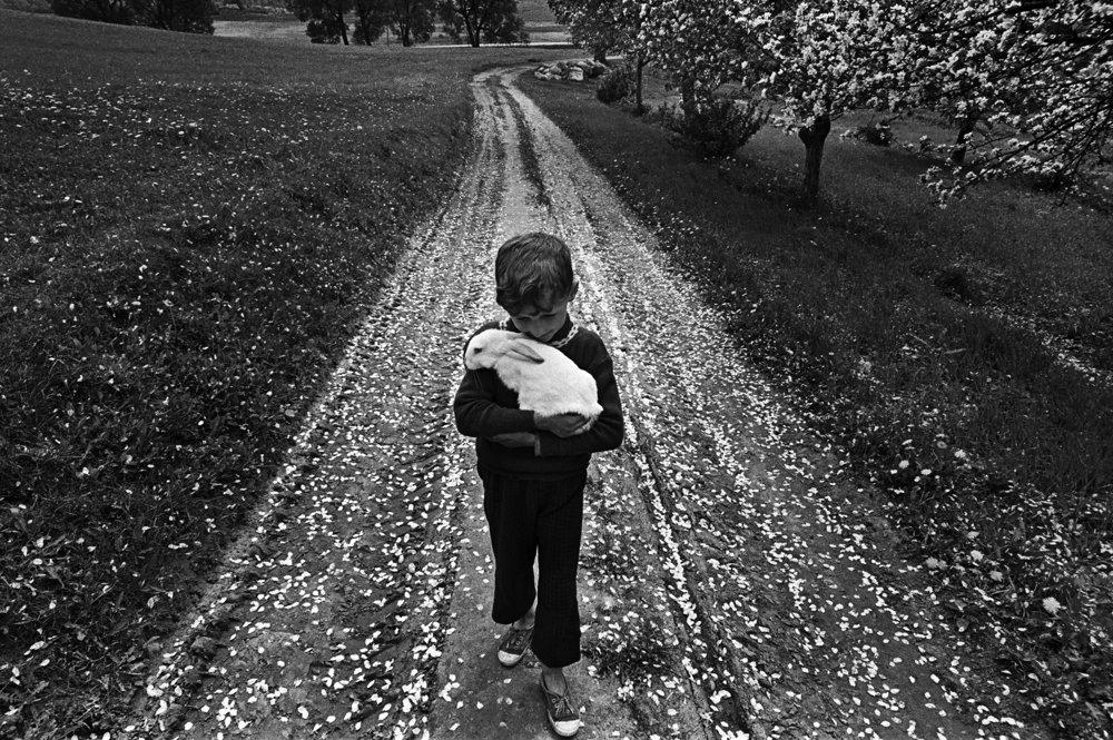 Fotografi – víťazi Litovskej národnej kultúrnej a umeleckej ceny v rokoch 1990-2011