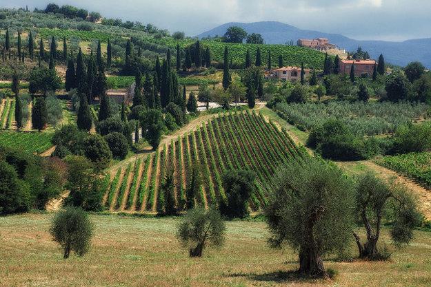 Toskánska krajina v okolí Montalcina.