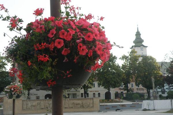 Aj v závesných kvetináčoch pribudli nové kvety.