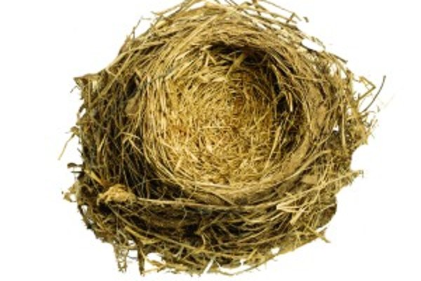Každých rodičov to raz čaká, že ich dieťa sa vyberie vlastnou cestou a rodinné hniezdo zostane prázdne...