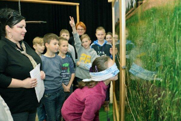Školáci so zaviazanými očami skúšali sledovať pachovú stopu tak, ako hraboš.