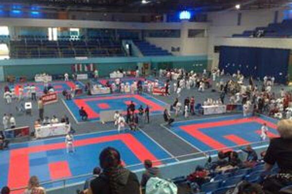Slovenský pohár v karate mládeže sa vyznačoval vynikajúcou úrovňou.