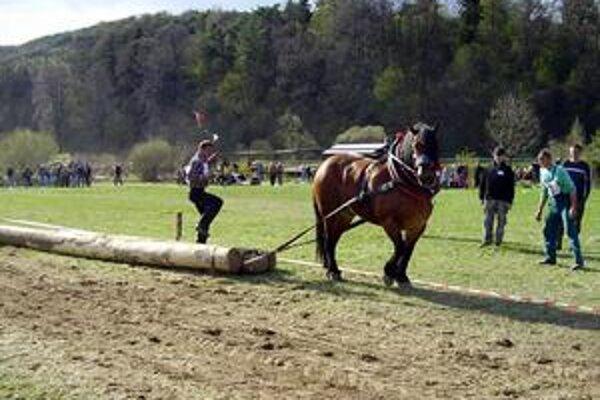 Organizátor i pretekár. Druhý v poradí Peter Pardus a jeho koník Cigán.