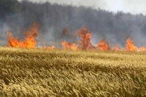 Dôsledkom sucha sú požiare aj na takých miestach, kde predtým nebývali.