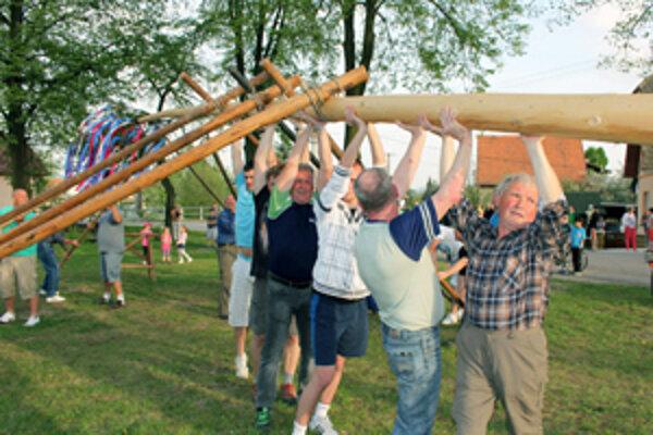 V Malinovej postavili chlapi máj, ktorý meria 24 metrov.