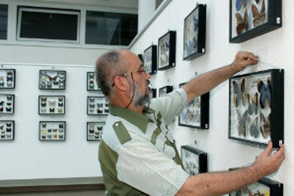 Michal Zachar vystavuje preparovaný aj živý hmyz.
