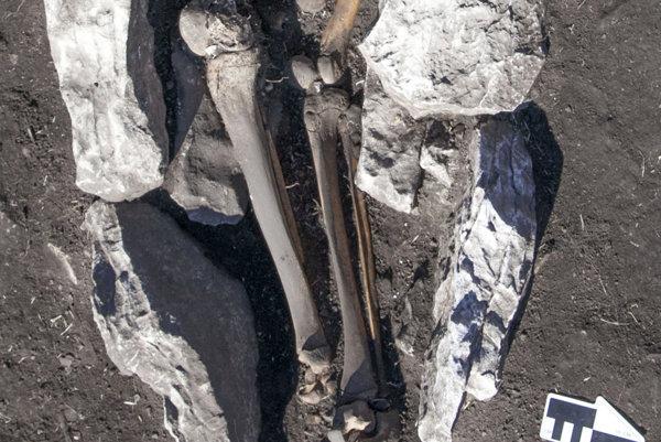 Vedci našli ľudské pozostatky v zvieracom popole.