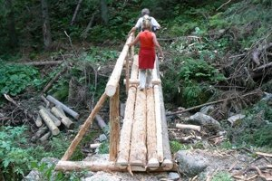 Urbár chce kalamitné drevo v doline vyťažiť. Ochranári a aktivisti sú proti.