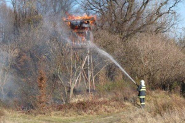 Najviac lesných požiarov vzniklo vypaľovaním trávy.