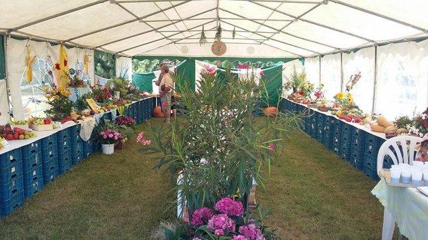 Výstava kvetov, ovocia i zeleniny
