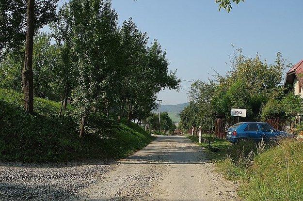 Po ceste, ktorá cez vrchy spája Udiču s Jasenicou, chodia ľudia často na prechádzky. Medveďa videli len kúsok od nej.