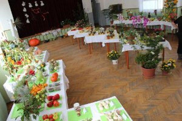 Výstava ponúkla množstvo zaujímavých plodov a rastlín.