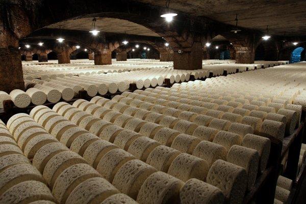 Niva je v podstate napodobeninou syru s ušľachtilou plesňou roquefort, ktorého názov je chránený a vyrába sa z ovčieho mlieka v okolí francúzskeho mesta Roquefort. Na snímke jeho zrenie.