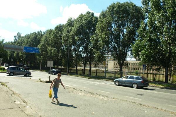 Chodci  budú  bezpečnejšie prechádzať aj cez Tamaškovičovu ulicu.