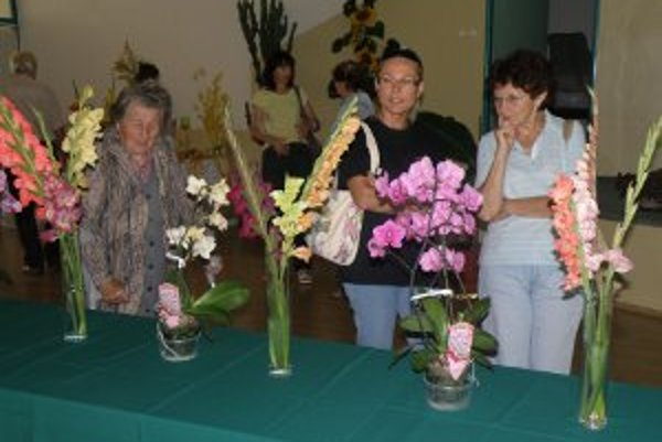 Na výstave Miniflóra Kanianka boli gladioly najviac obdivované.