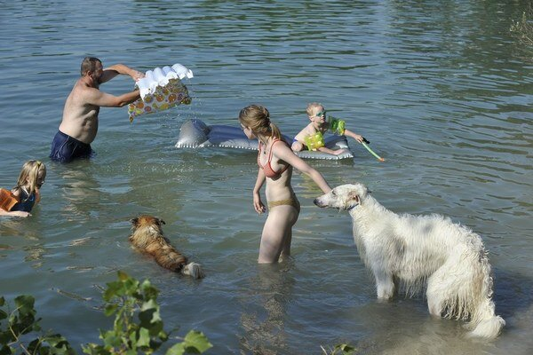 Oblievať psa ľadovou vodou nie je ideálne.