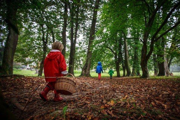 V lese pri Stupave sú predškoláci z Jadierka ako doma, nezastaví ich ani horšie počasie.