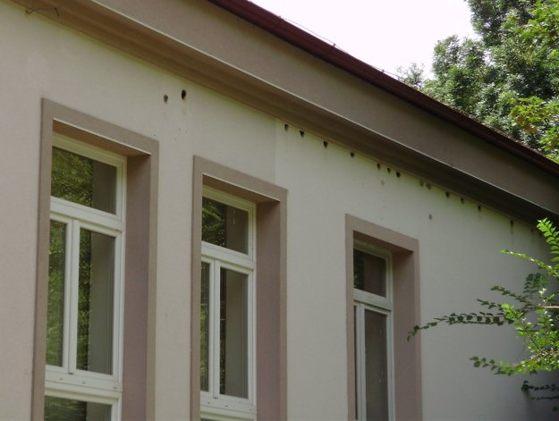 Diery od ďatľa na kultúrnom dome v Párovských Hájoch.